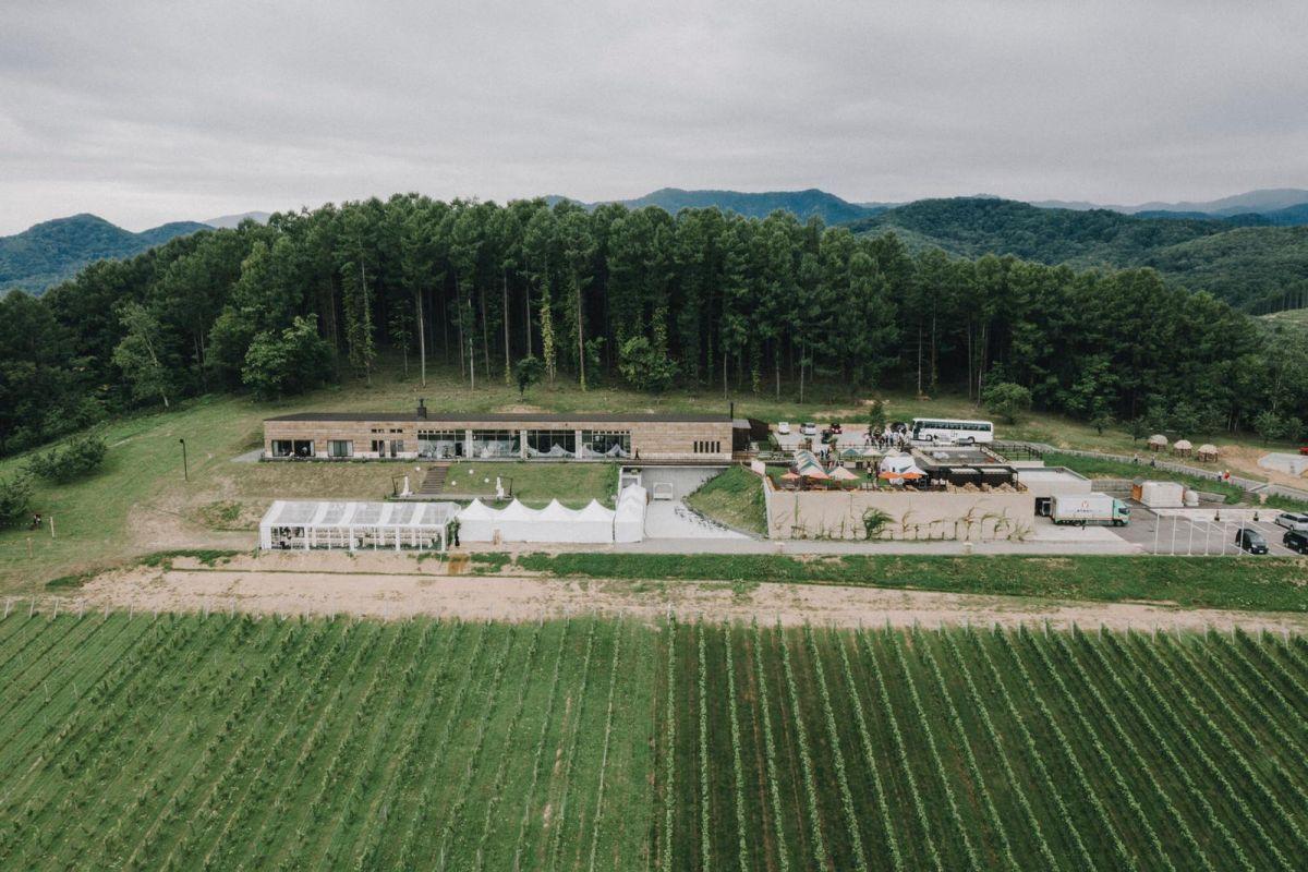 Niki vineyard